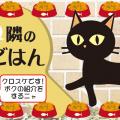 黒猫クロスケとは?