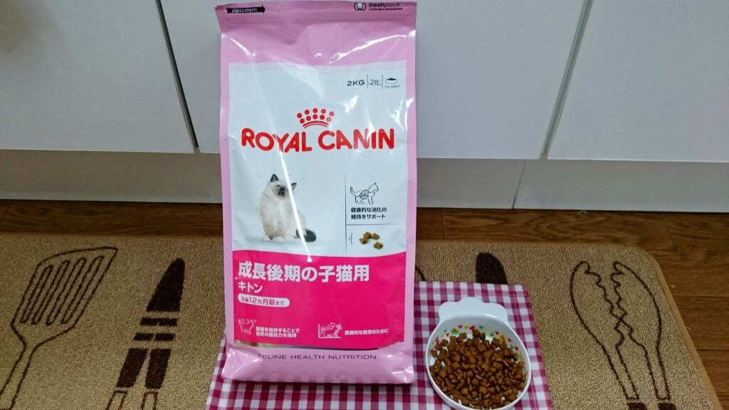 ロイヤルカナン 成長後期の子猫用 キトン