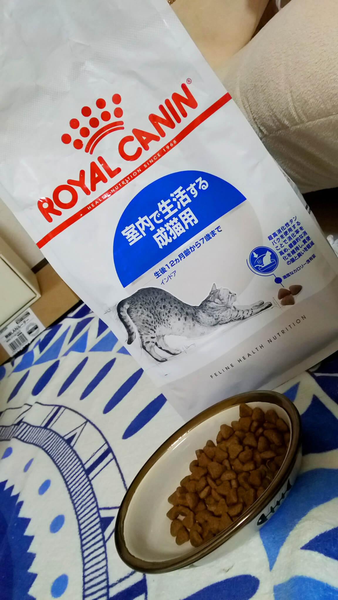 ロイヤルカナン 室内で生活する成猫用 ドライフード